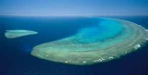 gbr-cairns_great_barrier_reef